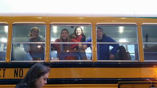 bus (Briscoe photo)