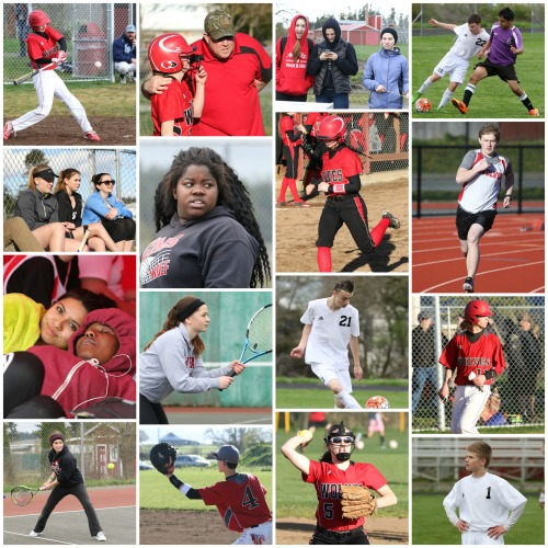 This collage of spring sports athletes shows just a hint of how many athletes are out there, and every one has a story to tell. (John Fisken photos)