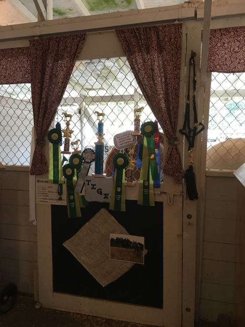 Roberts trophies get their own stall.