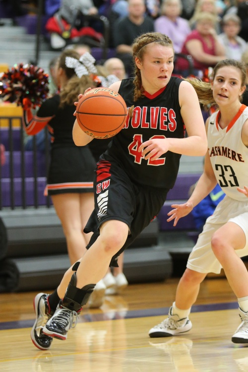 Kailey Kellner, seen here in last year's state playoff game, snared 11 rebounds Sunday in a win over Lakewood. (John Fisken photo)